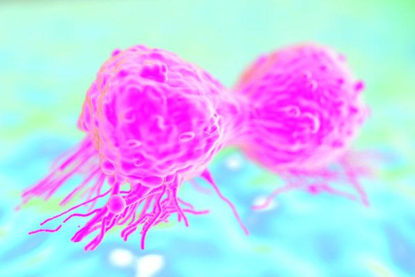 Enrayer les engrenages du cancer du sein triple négatif