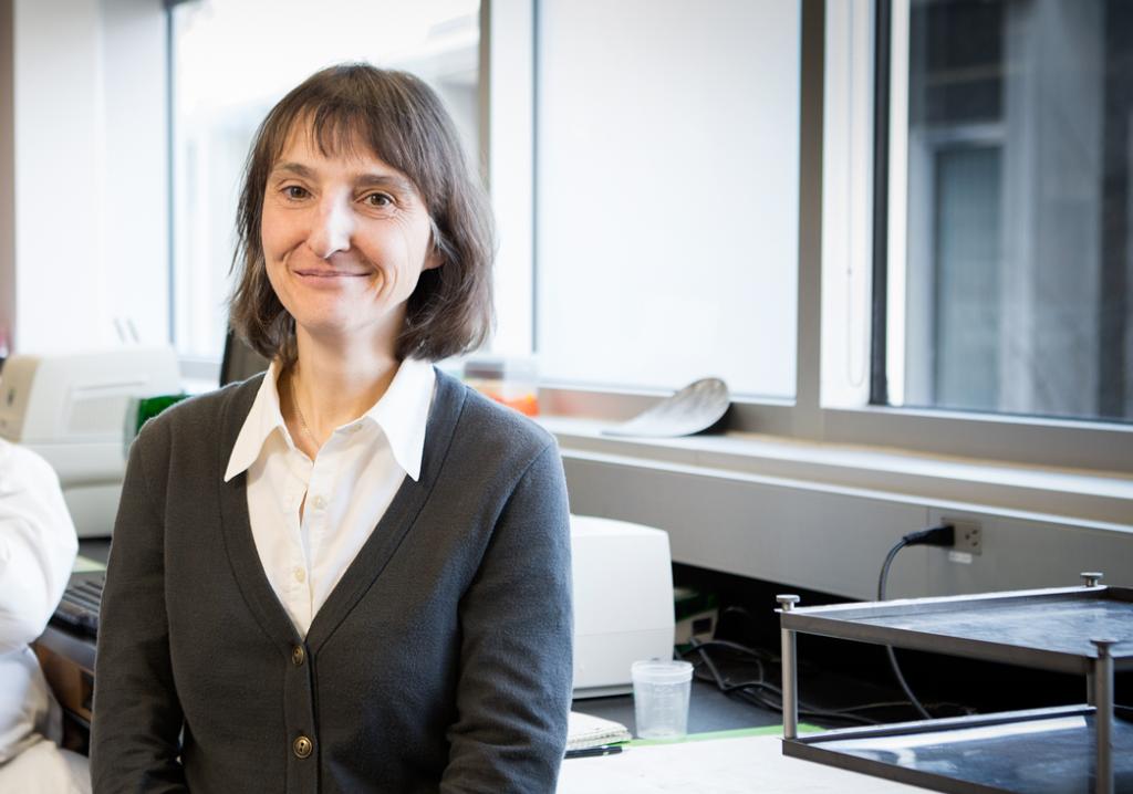 Cathy Vaillancourt, professeure-chercheure en recherche sur la grossesse et toxicologie à l'Institut national de la recherche scientifique.