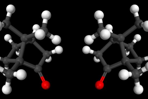 Les molécules sont-elles droitières ou gauchères?