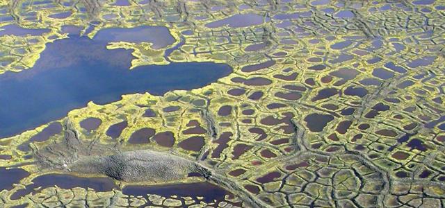 Le pergélisol dégèle, les lacs nordiques brunissent