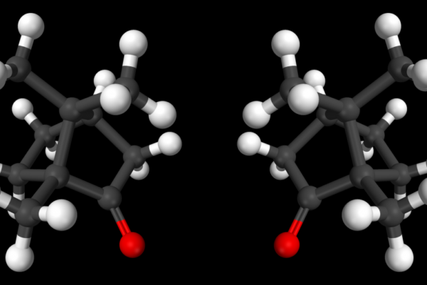 Are molecules right-handed or left-handed?