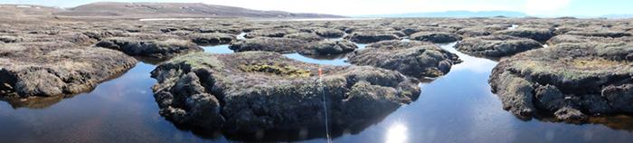 Les mares et les lacs de l'île Bylot : puits ou sources de GES?