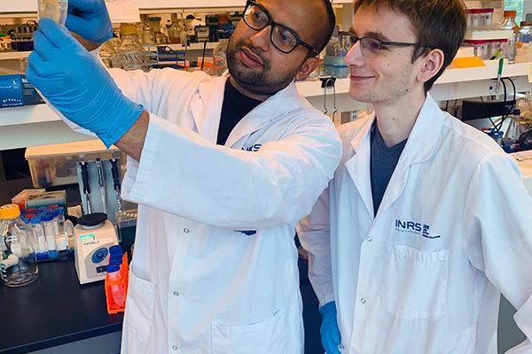 Le programme Apprentis en biosciences s'étend au-delà des sciences de la santé
