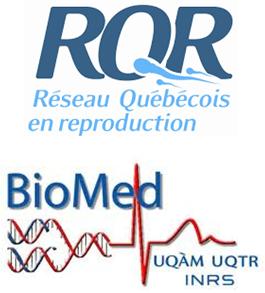 Logo RQR
