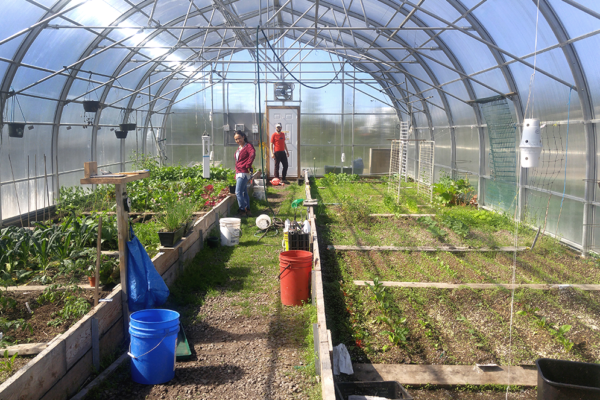 Using the power of the earth to heat greenhouses