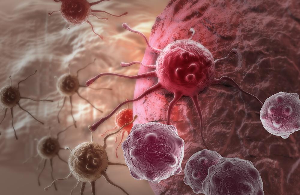 Nos chercheurs se démarquent dans la lutte contre le cancer
