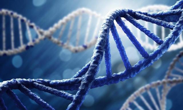 Deux chercheurs de l'INRS s'attaquent aux maladies neurodégénératives rares