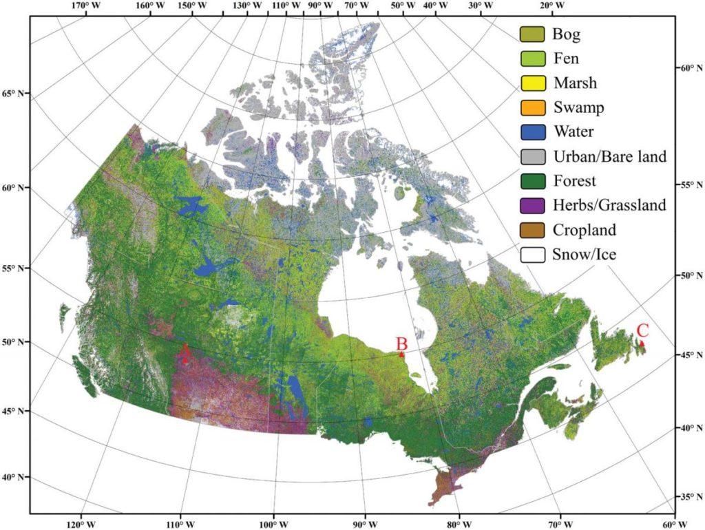 Marais, marécages, tourbières et eaux de surface. La répartition spatiale des zones humides est cruciale pour la gestion durable et la préservation de ces écosystèmes fragiles. Le professeur Saeid Homayouni a collaboré avec une équipe de chercheurs en Amérique du Nord, dont certains de l'Université Memorial de Terre-Neuve, afin de générer la première carte des milieux humides à l'échelle du pays avec un niveau de détails aussi élevé.     Ils ont atteint une résolution de 10 mètres pour l'ensemble du Canada, plutôt que les 30 mètres habituels. La carte permet donc d'observer des zones humides aussi petites que 10 m2. Le professeur Homayouni veut augmenter la résolution pour étudier des surfaces de moins de 5 m2. «Avec ce haut niveau de détails pour des zones ciblées, ça nous permettrait d'analyser plusieurs paramètres comme la couverture du sol par la végétation, l'eau ou les roches», lance le chercheur en télédétection et géomatique environnementale, qui a rejoint l'INRS en avril 2019.     La cartographie du Canada indique même le type de zones humides. Pour les classifier, l'équipe de chercheurs a tiré profit des données de référence disponibles. «Nous avons utilisé les informations amassées par les chercheurs sur le terrain. Ils identifient quels secteurs correspondent à quels types de milieux humides. Ces informations ont servi de base d'apprentissage pour l'algorithme grâce auquel on a pu ensuite trouver des types similaires dans les images fournies par les satellites», explique Saeid Homayouni.