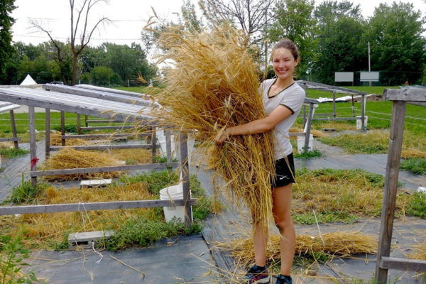 La maîtrise en microbiologie environnementale de Jessica Dozois