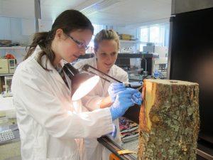 Plus de 15 ans à éveiller la passion des jeunes pour la recherche scientifique