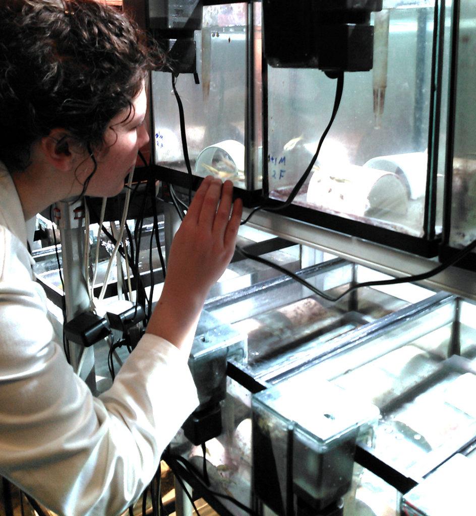 Le doctorat en écotoxicologie de Linda Lara-Jacobo