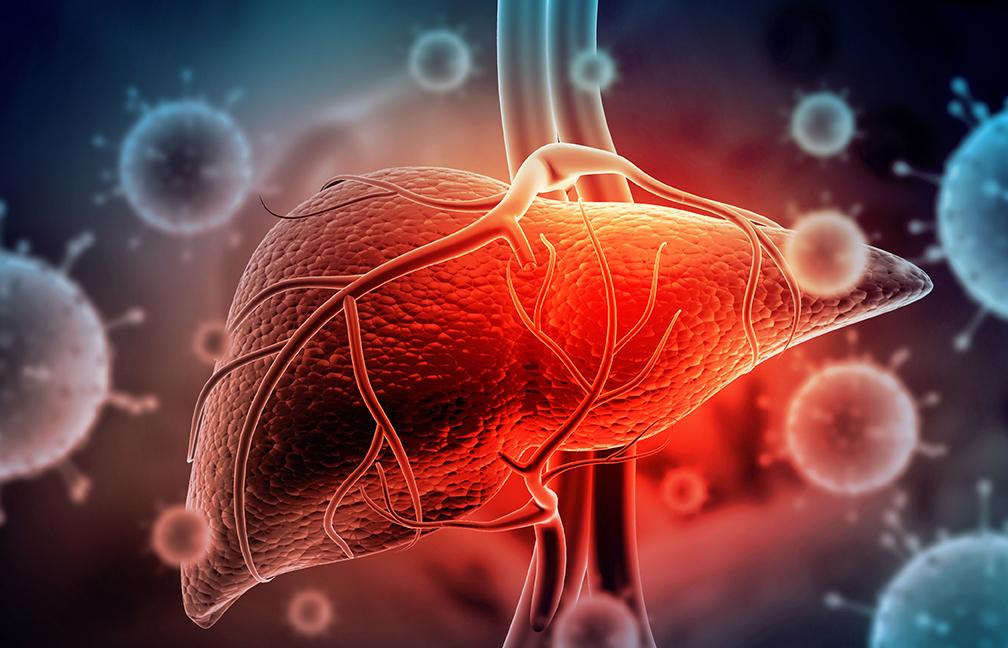 L'hépatite est une maladie du foie.