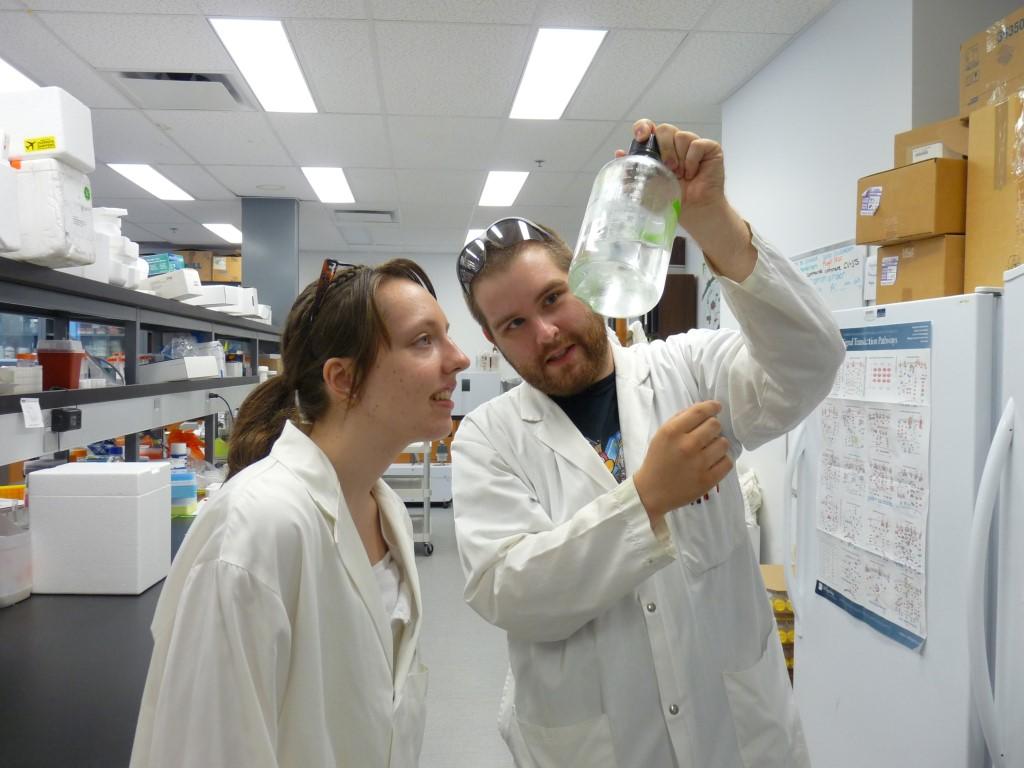 Apprentis chercheurs