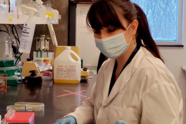 Ma recherche en série : le doctorat en biologie d'Ève Bernet