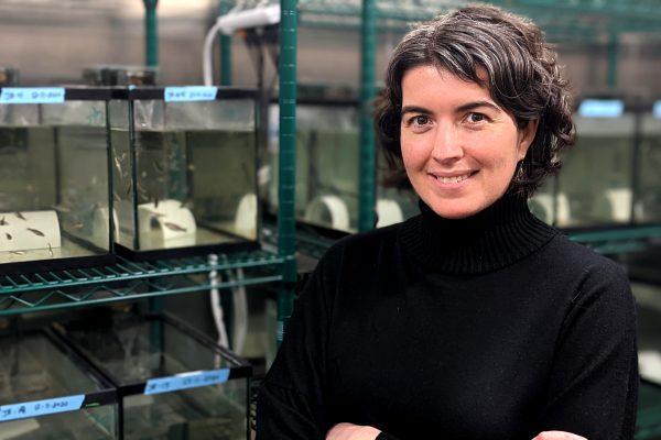 Un succès pour la visite virtuelle du laboratoire de Valérie Langlois