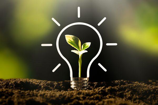 Un partenariat pour assurer la relève entrepreneuriale en environnement et en technologies propres