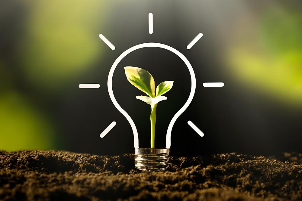 Création de jeunes pousses pour le développement de technologies propres pour l'environnement.