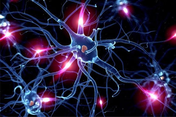 Discovery of the role of a key gene in the development of ALS