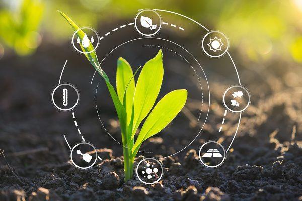 2,5 M$ pour la création du Réseau québécois de recherche en agriculture durable