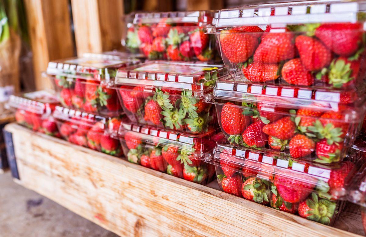 Des casseaux de fraises